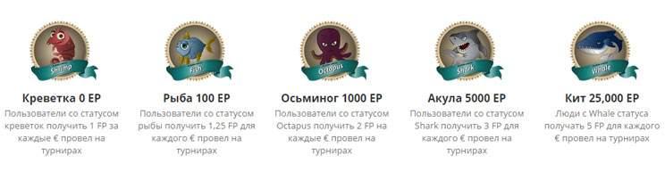 fanaments-vip-rewards-loyalty-programm